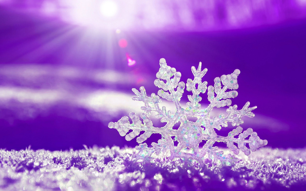align-mentality unique snowflake horizon